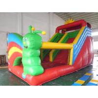 Funny Inflatable Water and Dry Slide Manufactures