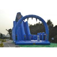 Funny PVC Fireproof Tarpaulin Commercial Inflatable Water Slides Blue Manufactures