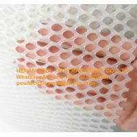 Quality Broiler Chicken Farm White PE Plastic Wire Mesh & Fencing Net for Broiler Chicken Floor Raising System for sale