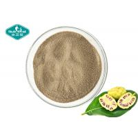 Dry Place Storage Noni Fruit Powder , Noni Juice Powder For Healthy Body Weight Manufactures