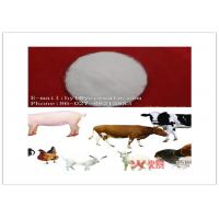 White Powder Veterinary Raw Materials 95% Assay CAS 71751-41-2 Abamectin , ISO9001 Listed Manufactures