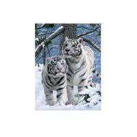 Vivid Tiger Image 3d Lenticular Image For Home 0.76mm Thickness 3d Animal Pictures Manufactures
