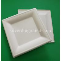 Biodegradable Disposable Sugarcane Pulp Paper Plate, 8 Inch Square Plate Manufactures