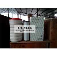 Compactor Paver Truck Crane Parts , Full Series XCMG truck Crane Air Filter Manufactures