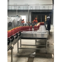 2TPH Tomato Paste Processing Line Manufactures