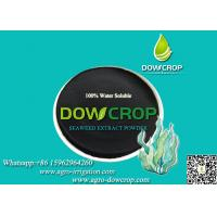 SEAWEED EXTRACT POWDER FERTILIZER Manufactures
