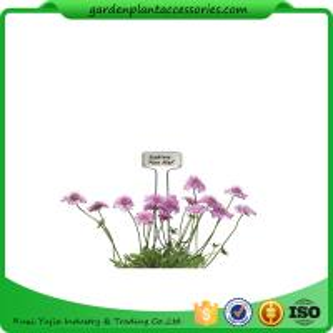 Decorative Plant Garden Landscape Markers / Garden Plant Marker Manufactures