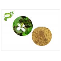 Traditional Plant Extract Powder Inflammation Houttuynia Cordata Thunb Extract Powder Manufactures