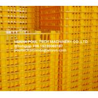 Poultry Bird & Broiler Chicken Farm Orange PE Material Broiler Chicken Carriage Cage & Plastic Transport Cage for Sale Manufactures