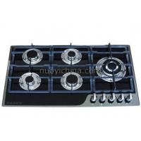 Built-in Type Gas Stove_NY-QB5023 Manufactures
