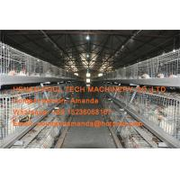 Quality Poultry Farming Steel Silver Automatic Broiler Chicken Cage for Chicken Shed for sale