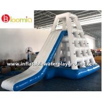 Commercial Inflatable Water Games Jungle Joe With Slide For Lake Or Ocean Manufactures