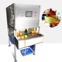 0.6kw Power Fruit And Vegetable Processing Machine High Peeling Speed Manufactures