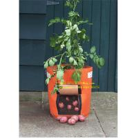 PROMOTION GROW BAG,SISE IS FROM 2-15 GALLON COLORS ARE OPTIONED,SAMPLE IS FREE WE HAVE PROMOTION TIMELY Manufactures