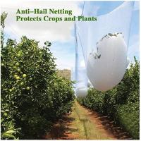 China Agricultural HDPE White Anti Hail Net , UV Stabilized Fruit Tree Netting on sale