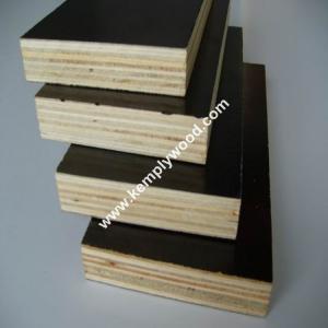 Phenolic film faced plywood board price/ structural plywood/ film faced shuttering plywood Manufactures