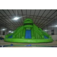 0.9mm PVC Tarpaulin Family Inflatable Swimming Pool Slides For Amusement Park Manufactures