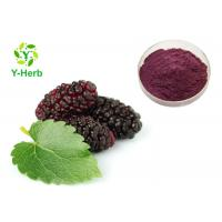Mulberry Fruit Powdered Fruit Juice Concentrate Bulk Beverage Use Manufactures
