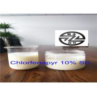 Quality Low Toxicity Organic Insecticide Products Pesticide 10% SC Chlorfenapyr for sale