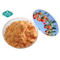 Organic Red Wolfberry Fruit And Vegetable Powder / Freeze Dried Goji Berry Powder Manufactures