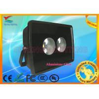 Professional AC 85 - 265V, 50 - 60Hz RGB IP65 50000 hours LED Projection Lamp Manufactures