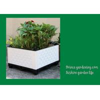 Plastic Garden Square Planter Boxes , Outdoor White Rectangular Planter Box Manufactures