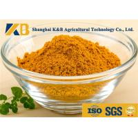 Natural Dried Fish Powder 60% Protein Content With Healthy Raw Material Manufactures