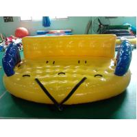 Kids Inflatable Water Sports Toys With Durable 0.9mm PVC Tarpaulin Manufactures