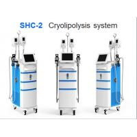 Strong power top quality CE TUV approved vacuum cavitation cryolipolysis machine Manufactures