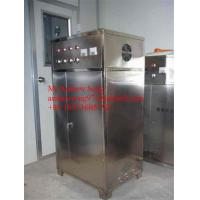 China 5 g/h Newest design ozone water treatment on sale