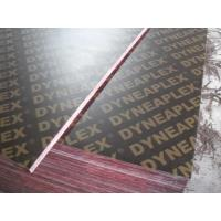 China Poplar Core Film Faced Plywood Manufactures