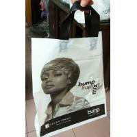 Quality Promotional Plastic Handle Bag With Logo , Printed PE Packaging Tote Bag for sale