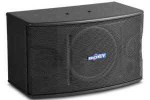 10 inch  full range karaoke speaker OK-220 Manufactures