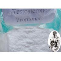 Muscle Building Pre - Mix Testosterone Propionate Injection CAS:57-85-2 100mg/ml 200mg/ml Manufactures