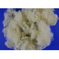 Buy cheap Recycled Hollow Conjugated Siliconized Polyester Fiber For Pillow Stuffing from wholesalers