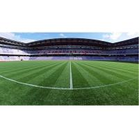 China Artificial Lawn Of Football Field  , Easy Installation , Long Using Life , Beautiful Color on sale
