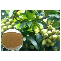 Oleuropein Natural Olive Leaf Extract Natural Ingredient With HPLC Test Manufactures