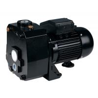 DP Series Suction Up To 50M Deep Well Pumps For Underground Pumping 1.5HP Manufactures