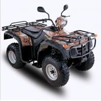 EEC 250CC ATV (For Two Persons) Manufactures