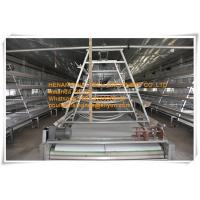 New Steel Sheet Silver White Poultry Farming Automatic Small Chicken Cage System with Feeding&Drinking System Manufactures