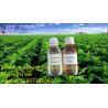 JST hot sell  Best USP Grade 99.95% pure nicotine salt Manufactures