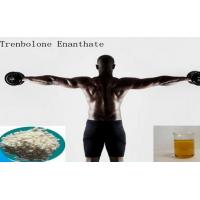 High Purity Muscle Growth Pale Yellow Powder Trenbolone Enanthate / Parabola Manufactures