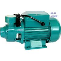 0.75HP 0.55KW Domestic Clean Water Pump For Pool Pumping / Garden Sprinkling Manufactures