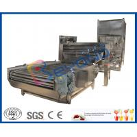 Vegetable / Fruit Washing Machine Rolling Drum With Brush Washer CE / ISO9001 Manufactures