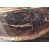Polished Brown Natural Semi Precious Stone Slabs Petrified Wood Manufactures