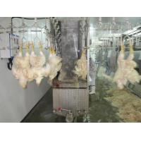 poultry slaughterhouse equipment Manufactures