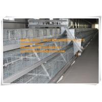 Quality Chicken Farm Steel Sheet Silver White  Small Chick Cage for Chicken Shed  with Feeding&Drinking System for sale