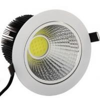 Ceiling downlight COB led light 30W Manufactures