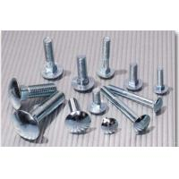 China High Tensile Galvanized Structural Bolts, Stainless Steel Fine Thread BoltsDurable on sale