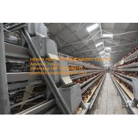 Quality Poultry Farming Cold or Hot Galvanized Steel Sheet Silver White  A Type Battery Layer Chicken Cage for sale